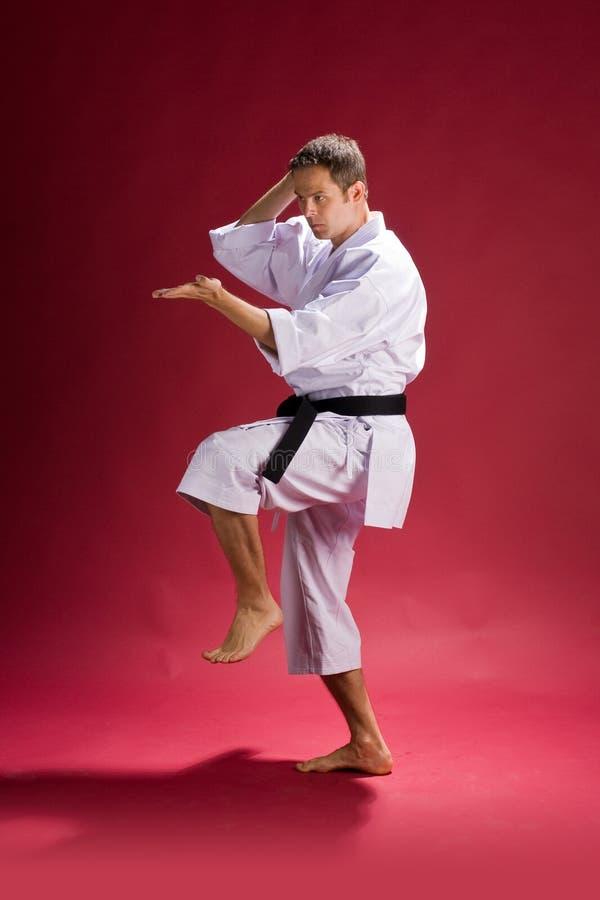 De mens van de karate in actie   stock foto's