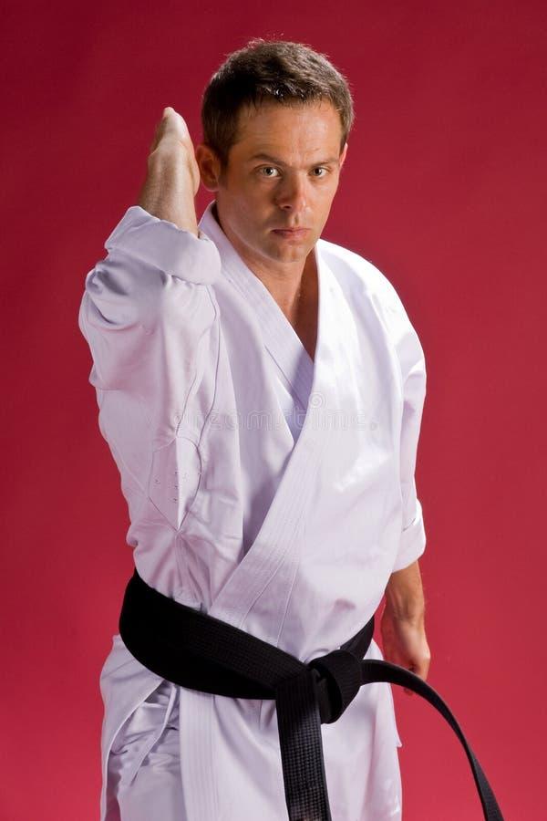 De mens van de karate in zwarte band royalty-vrije stock afbeelding