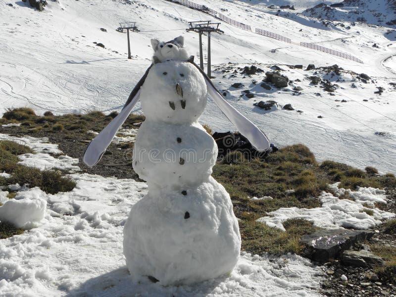 De mens van de sneeuw royalty-vrije stock afbeelding