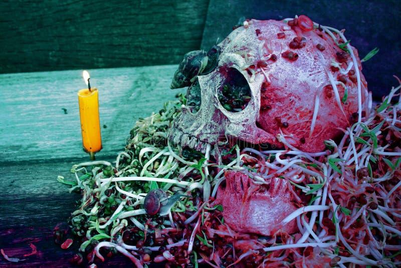 De mens van de doodsschedel met grote slak kruipt op gezicht en verrottingstaugé stock foto's