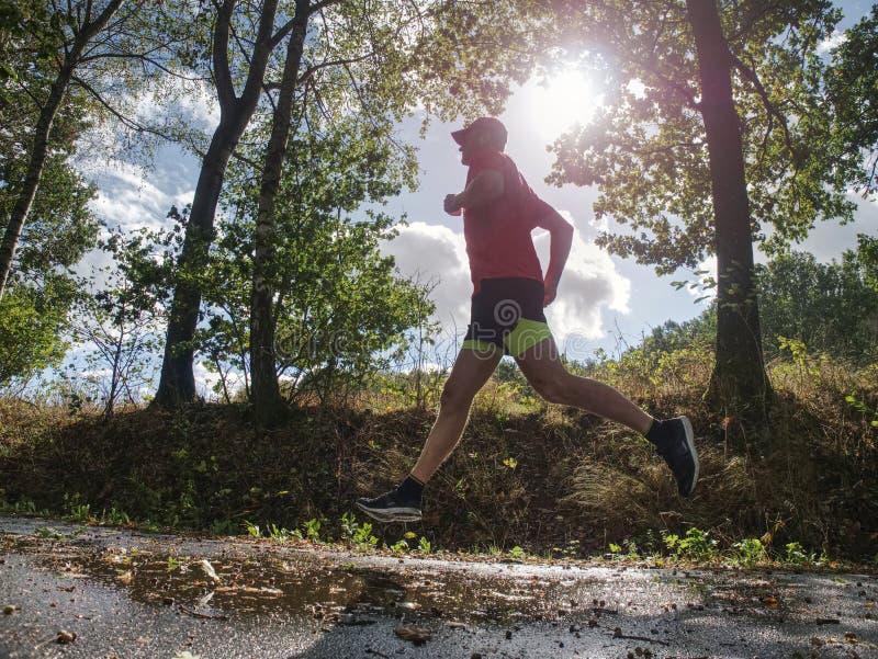 De mens van het sportencijfer loopt in de parksteeg in Zonnige ochtend royalty-vrije stock foto