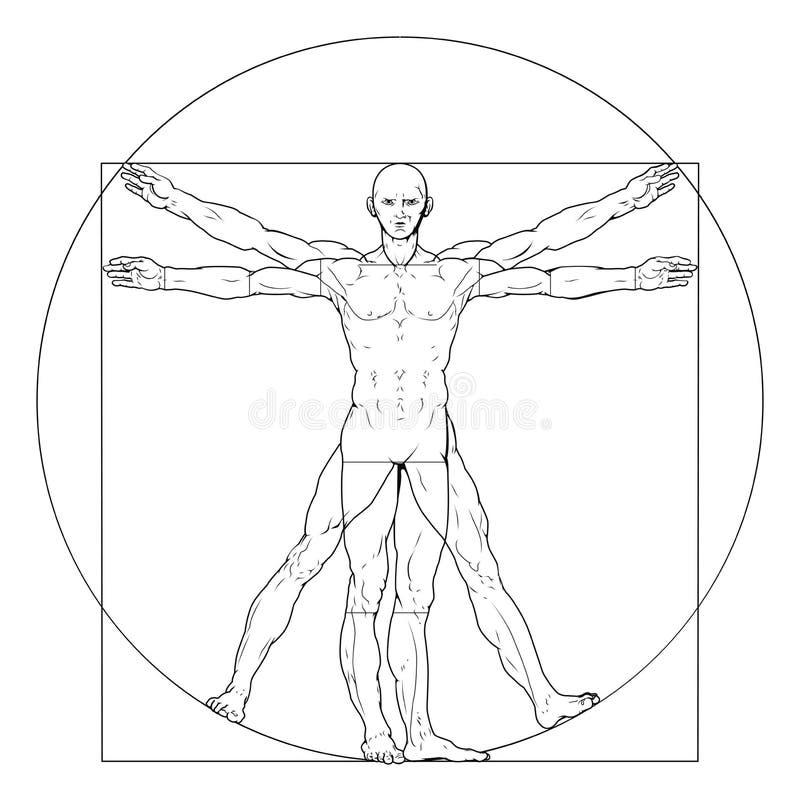 De mens van Vitruvian royalty-vrije illustratie