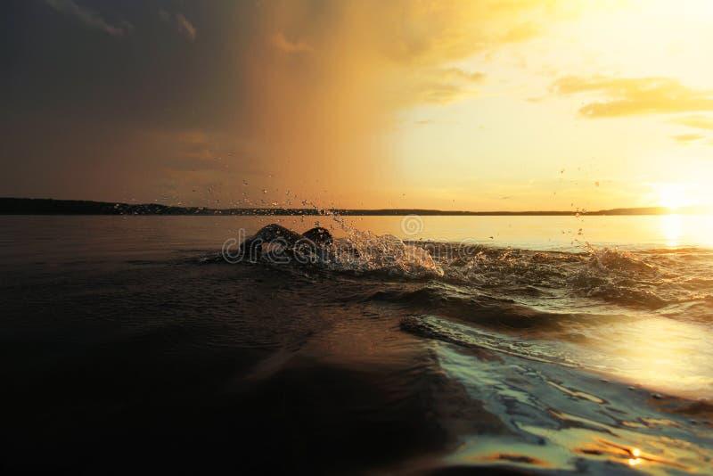 De mens zwemt over het meer bij zonsondergang Het voorbereidingen treffen voor competities en de Olympische Spelen royalty-vrije stock foto