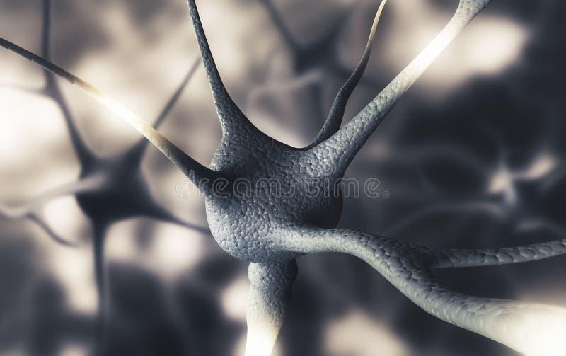 De menselijke 3d hersenenneuronen, geven illustratie terug royalty-vrije illustratie