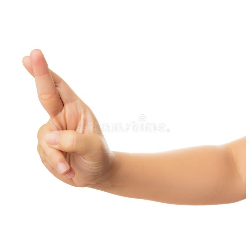 De menselijke Hand isoleert op witte achtergrond stock foto's
