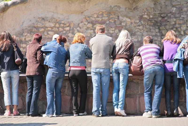De mensen bekijken rotsmuur in dierentuin stock fotografie