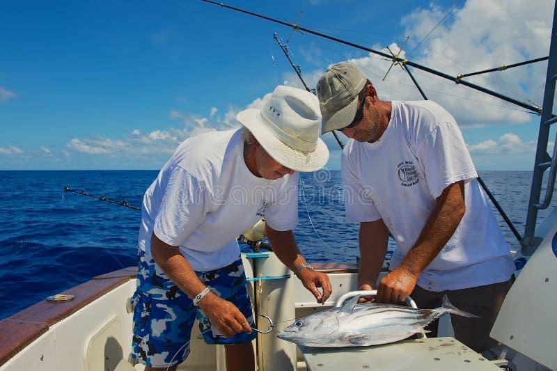 De mensen bevestigen tonijnvissen als aas voor marlijn vissend, op zee dichtbijgelegen heilige-Denis, Bijeenkomsteiland royalty-vrije stock foto