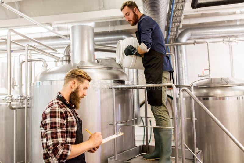 De mensen die bij ambachtbrouwerij of bier werken planten stock foto's
