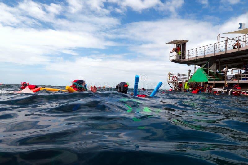 De mensen die en duiken van een platform in de Grote Barrière snorkelen royalty-vrije stock afbeeldingen