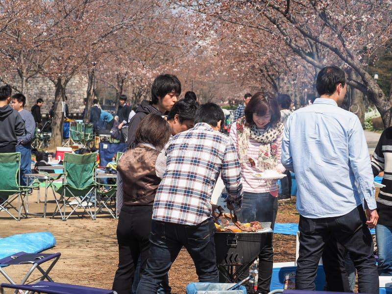De mensen die van Osaka van het festival van Kersenbloesems in park genieten royalty-vrije stock fotografie