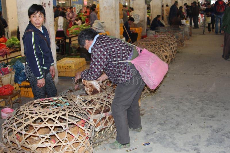 De mensen kopen en verkopen kippen in China; de kippen kunnen Sars virus en het H7N9 virus in China, Azië, Europa, de V.S. overbre royalty-vrije stock foto