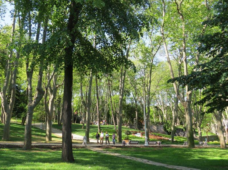 De mensen lopen in het historische stadspark Gulhane stock fotografie