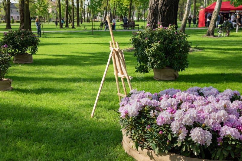 De mensen lopen in het de lentepark waar de rododendron bloeit royalty-vrije stock foto