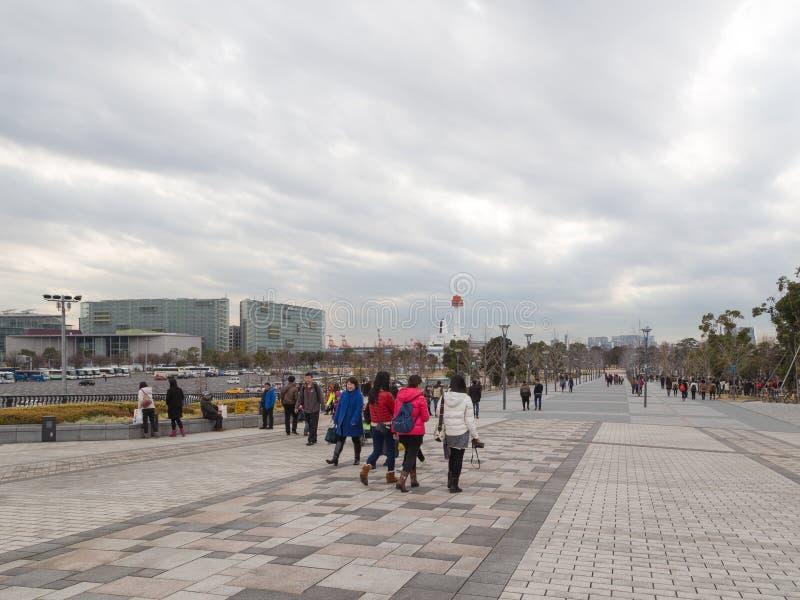 De mensen lopen in het park stock foto's