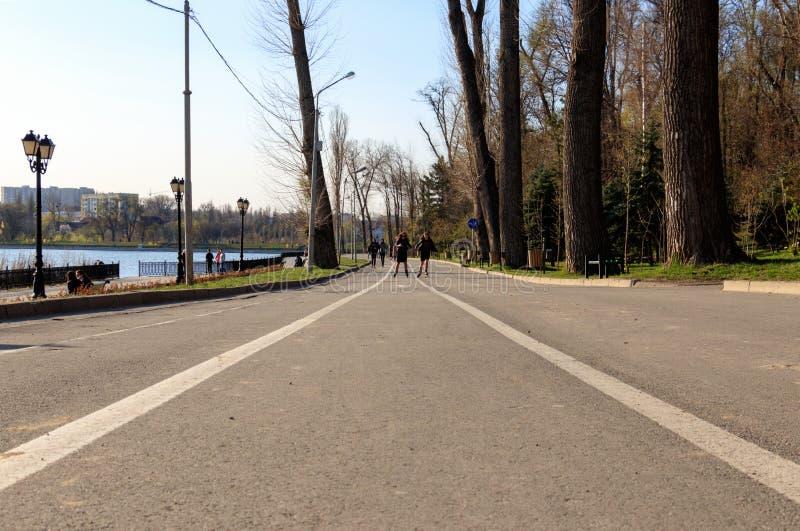 De mensen lopen in het park royalty-vrije stock afbeeldingen