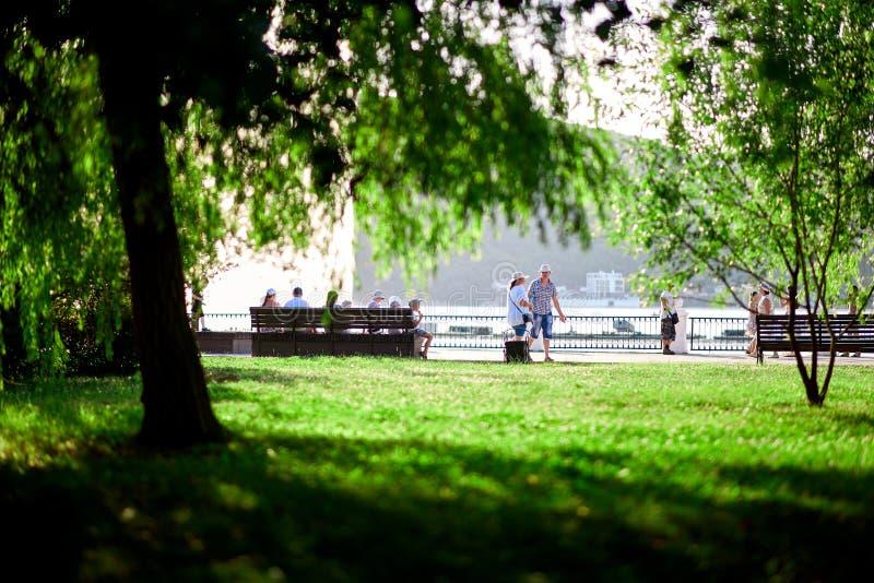De mensen lopen langs het mooie groene gazon van de waterkant royalty-vrije stock foto