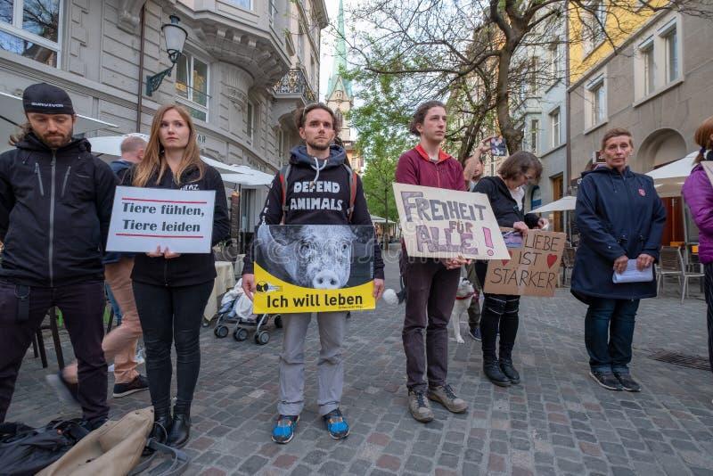 De mensen nemen aan straatprotest deel tegen dierlijke moord royalty-vrije stock foto