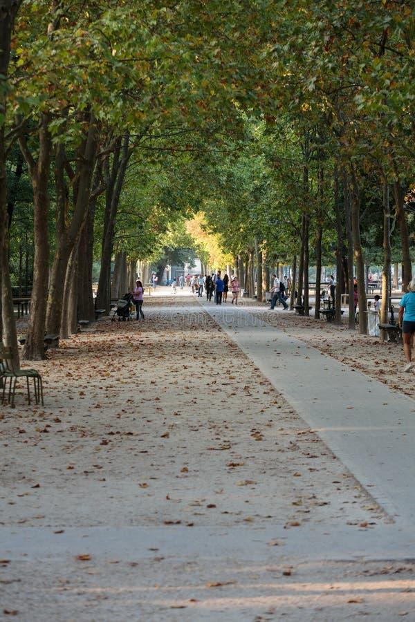 De mensen ontspannen in de Tuinen van Luxemburg in Parijs, Frankrijk stock fotografie