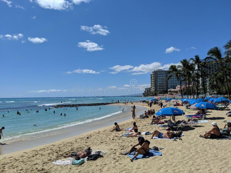 De mensen spelen in het beschermde water en hangen uit op het strand in Waikiki royalty-vrije stock foto