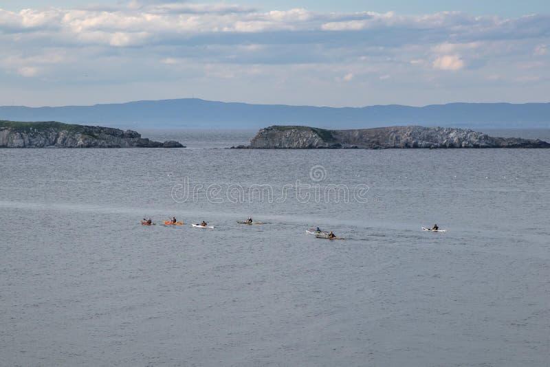 De mensen zwemmen in de Zwarte Zee op boten, deelnemen aan de marintimeconcurrentie, op het achtergrond mooie overzeese landschap stock afbeelding