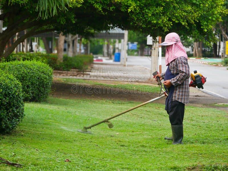 De mensenarbeider met een handgrasmaaimachine maait het gras stock afbeelding