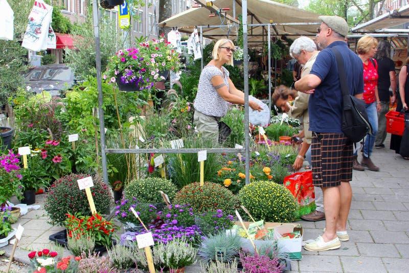 De mensenbloemen tuinieren installatiesmarkt, Jordaan, Amsterdam, Holland royalty-vrije stock foto's
