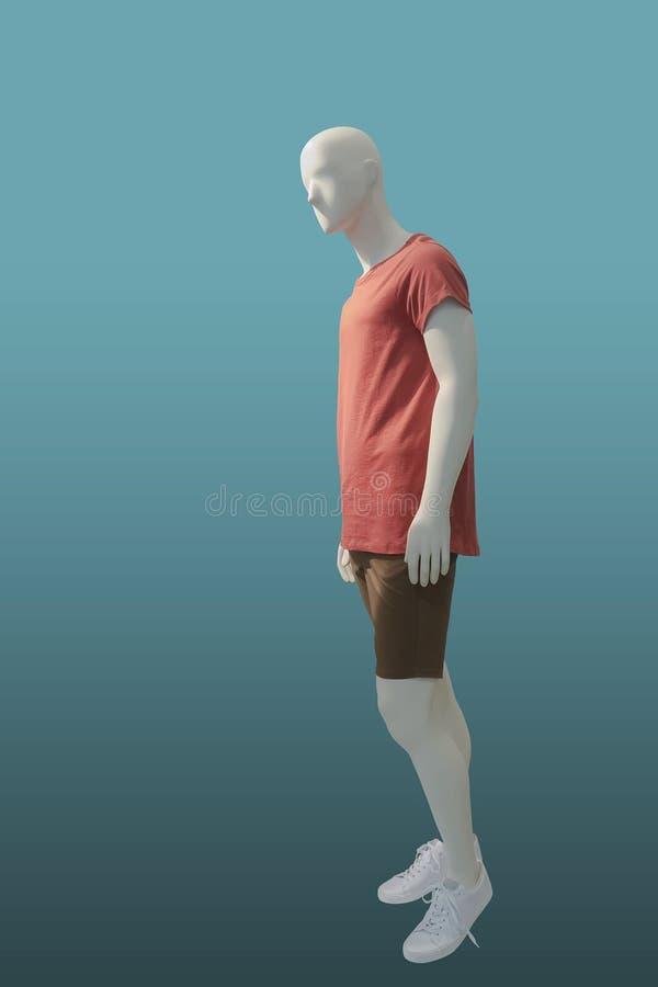 De mensenledenpop van gemiddelde lengte stock afbeeldingen