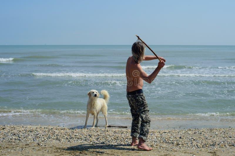 De mensenspelen met een hond werpt een stok stock fotografie
