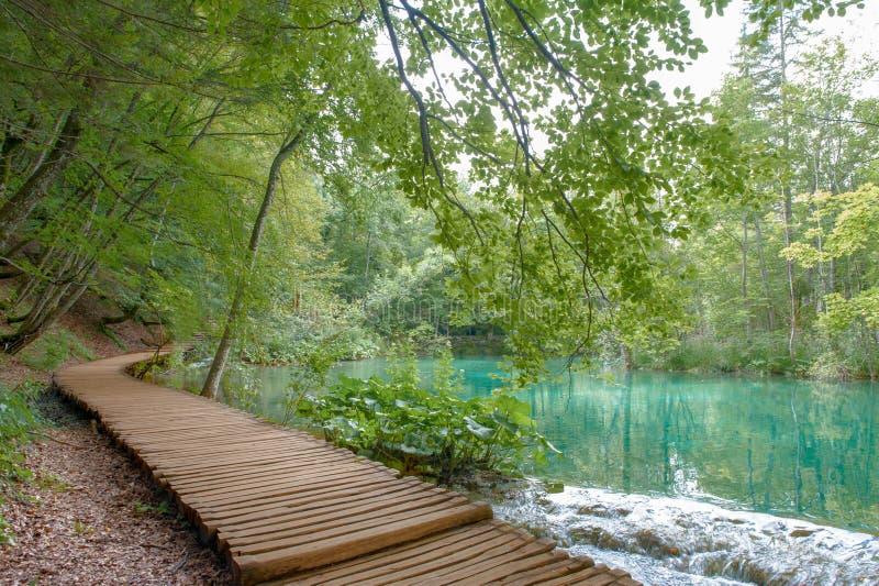 De Meren van Kroatië Plitvice royalty-vrije stock afbeelding