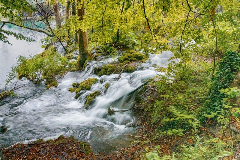 De meren van Plitvice in Kroatië Diepe bosstroom Glashelder water stock fotografie