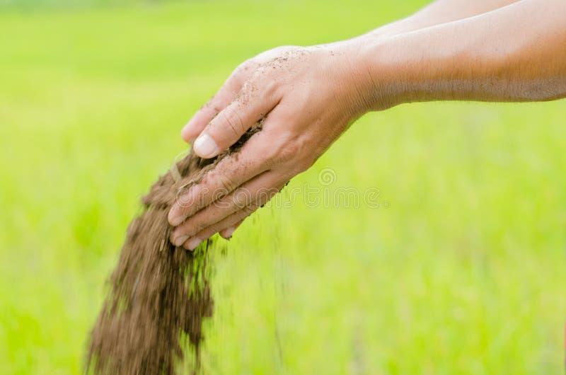 De meststof van het installatie het organische compost poring met landbouwershand royalty-vrije stock foto's