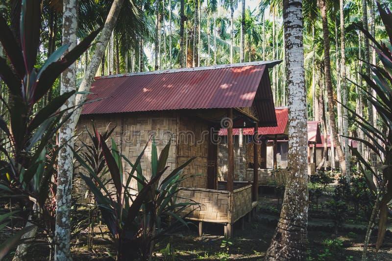 de Met stro bedekte dakhut in de wildernis stock afbeelding