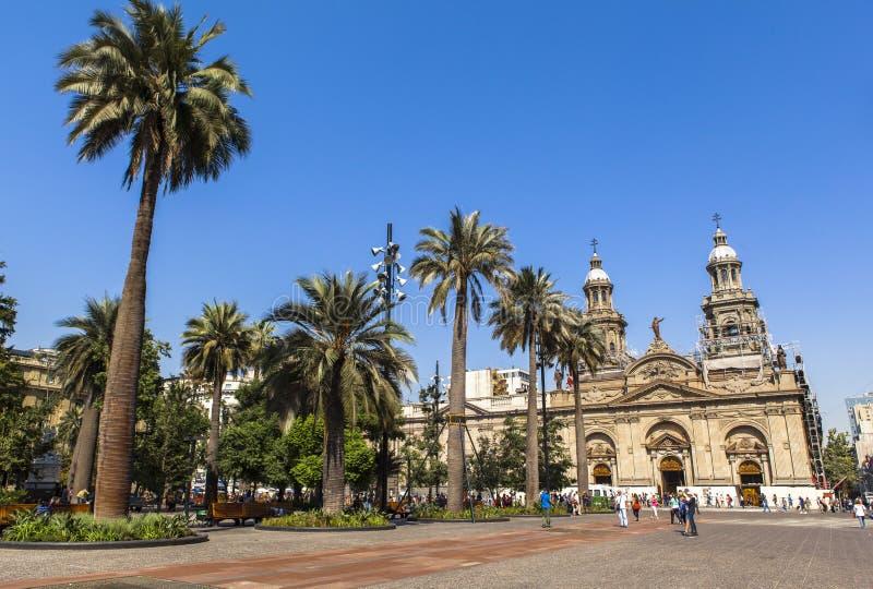 De Metropolitaanse Kathedraal van Santiago, Spaanse peper stock foto