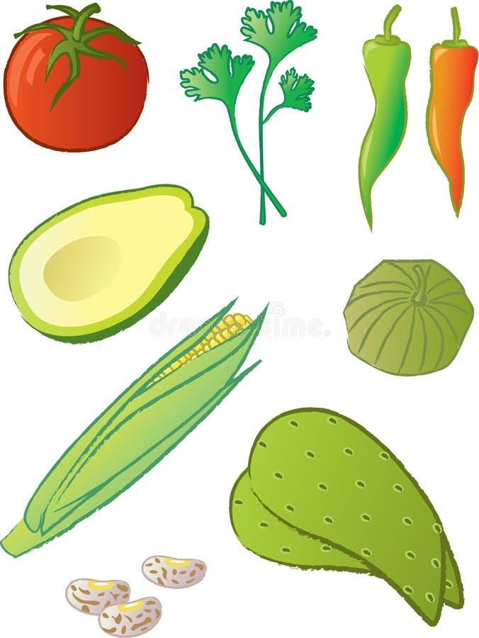 De Mexicaanse Ingrediënten van het Voedsel stock illustratie