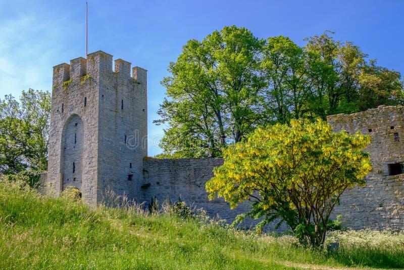 De middeleeuwse stadsmuur in Visby, Zweden stock foto