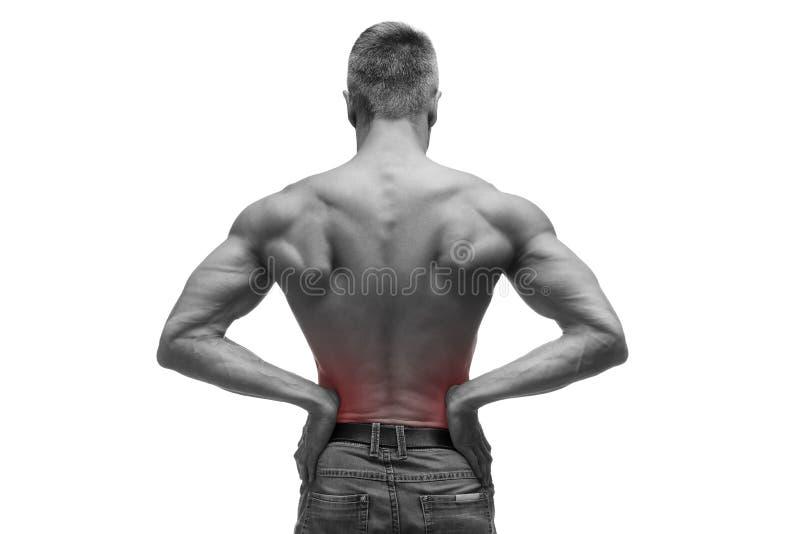 De midden oude mens met pijn in de nieren, spier mannelijk lichaam, studio isoleerde schot op witte achtergrond met rode punt stock foto's