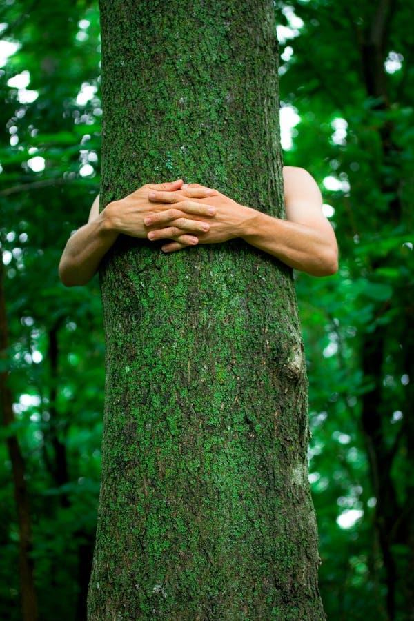 De milieudeskundige van de boom hugger stock fotografie