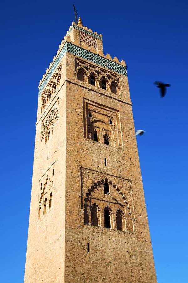 in de minaret van marocafrika en de vogel stock afbeelding