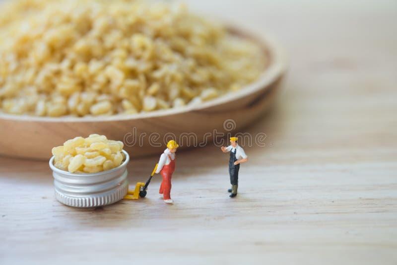 De miniatuurmensenchef-kok uitgezochte moong dal namkeen vers en kernachtig ingrediënt van het korrels het droge vegetarische voe royalty-vrije stock foto's