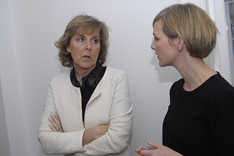 DE MINISTER VAN MS.IDA AUKEN VOOR MILIEU stock foto's