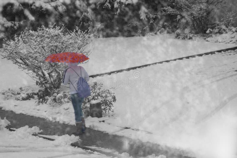 De minnaar van de sneeuw stock foto