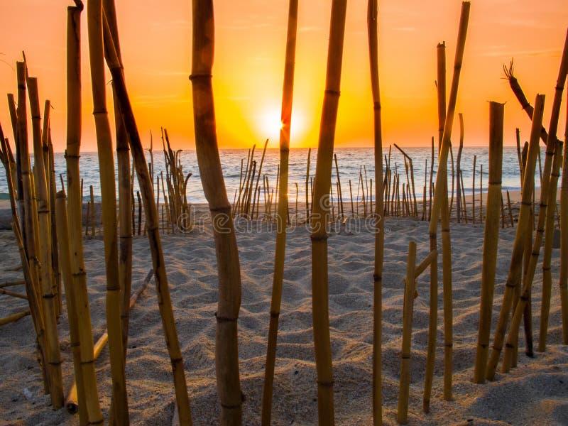 De minnaar vreedzame oceaan van het zonsondergangstrand stock afbeelding