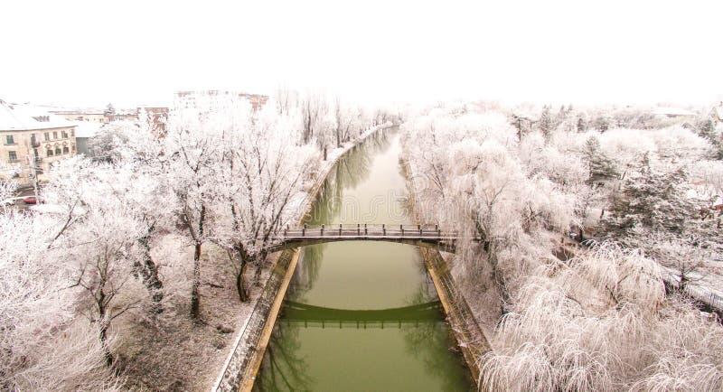 De minnaars overbruggen in Timisoara, Roemenië stock fotografie