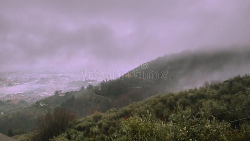 De mist stock fotografie