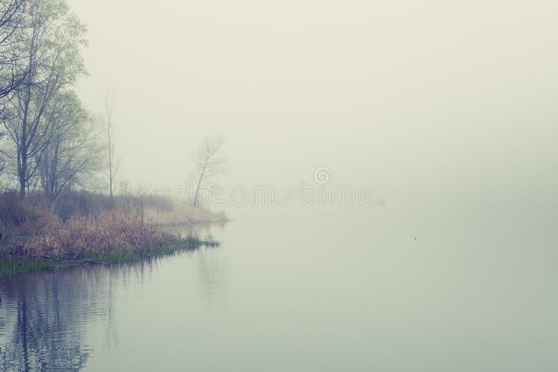 De mist royalty-vrije stock afbeelding