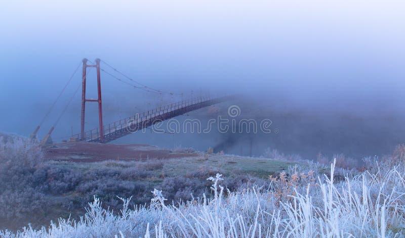 In de mist stock fotografie