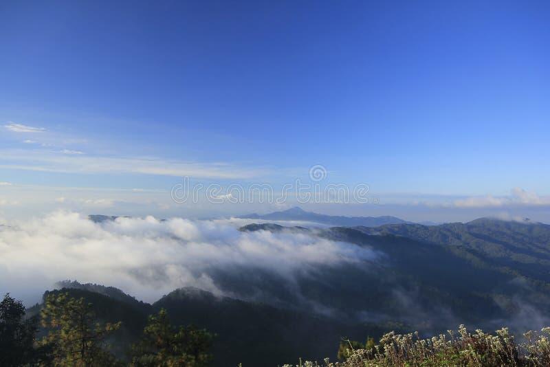 De mist behandelt de berg hieronder in de ochtend royalty-vrije stock afbeelding
