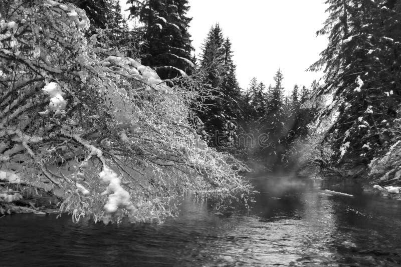 De mist die in de winter van een rivier komt royalty-vrije stock afbeelding