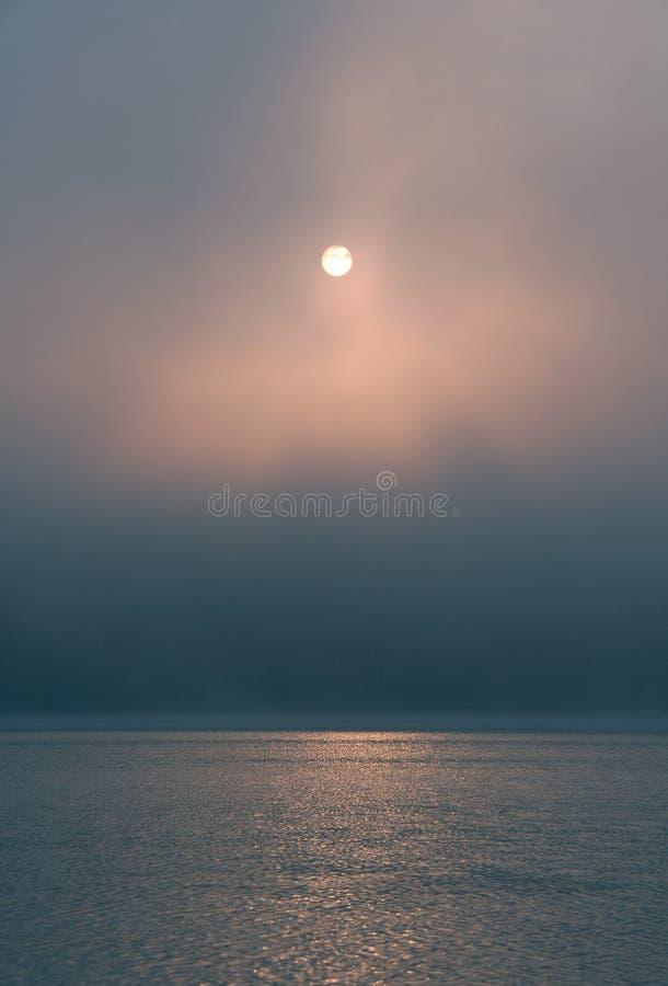 De mist van de ochtend royalty-vrije stock afbeeldingen
