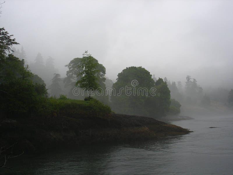 De mist van de ochtend royalty-vrije stock foto